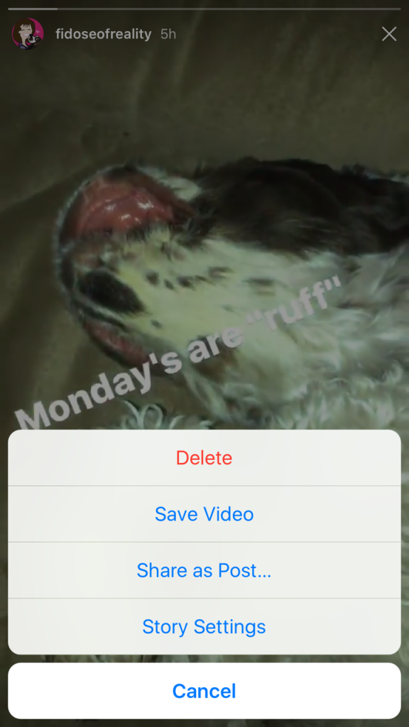 Instagram Stories option to save