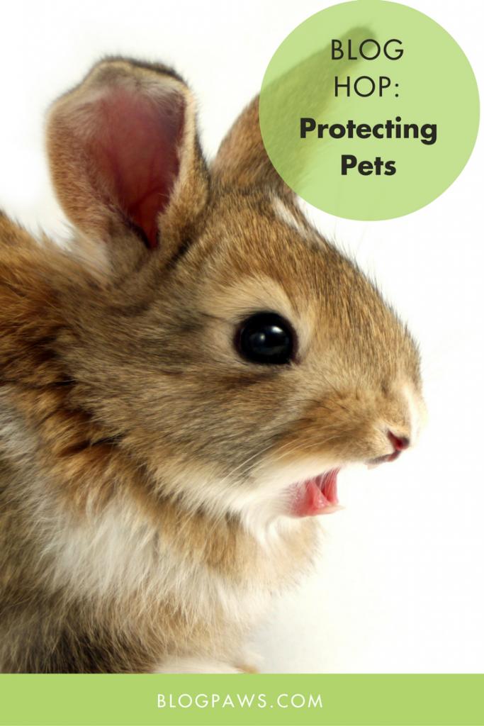 Protecting Pets blog hop