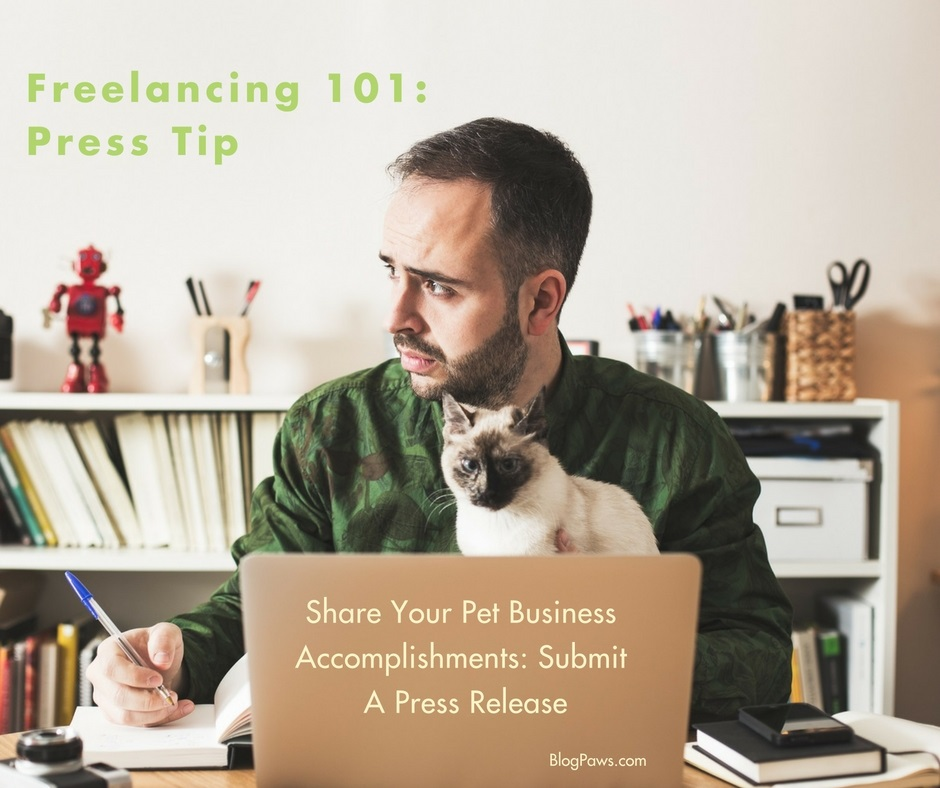 Freelancing 101 press releases