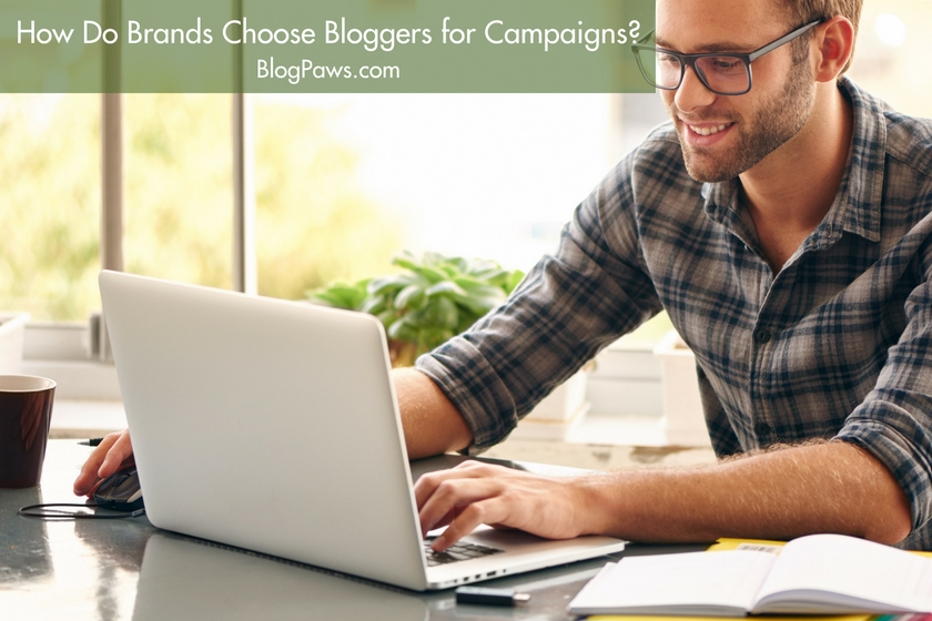 How Do Brands Choose Bloggers for Campaigns