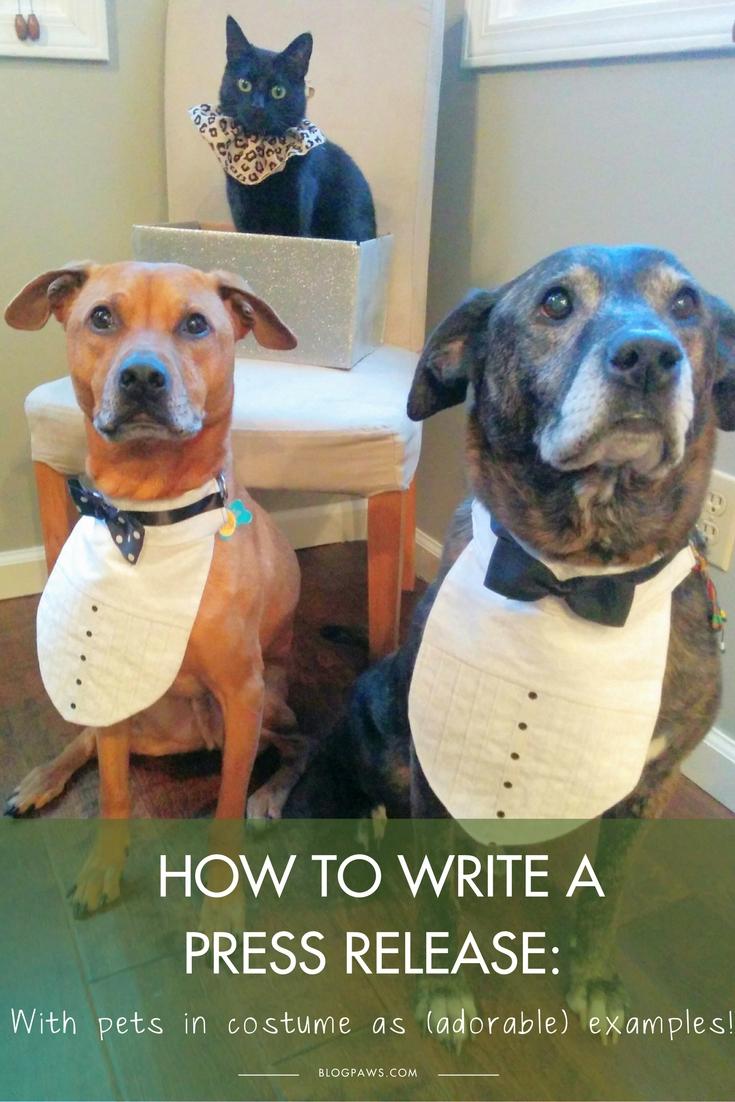 How to Write a Press Release | BlogPaws.com