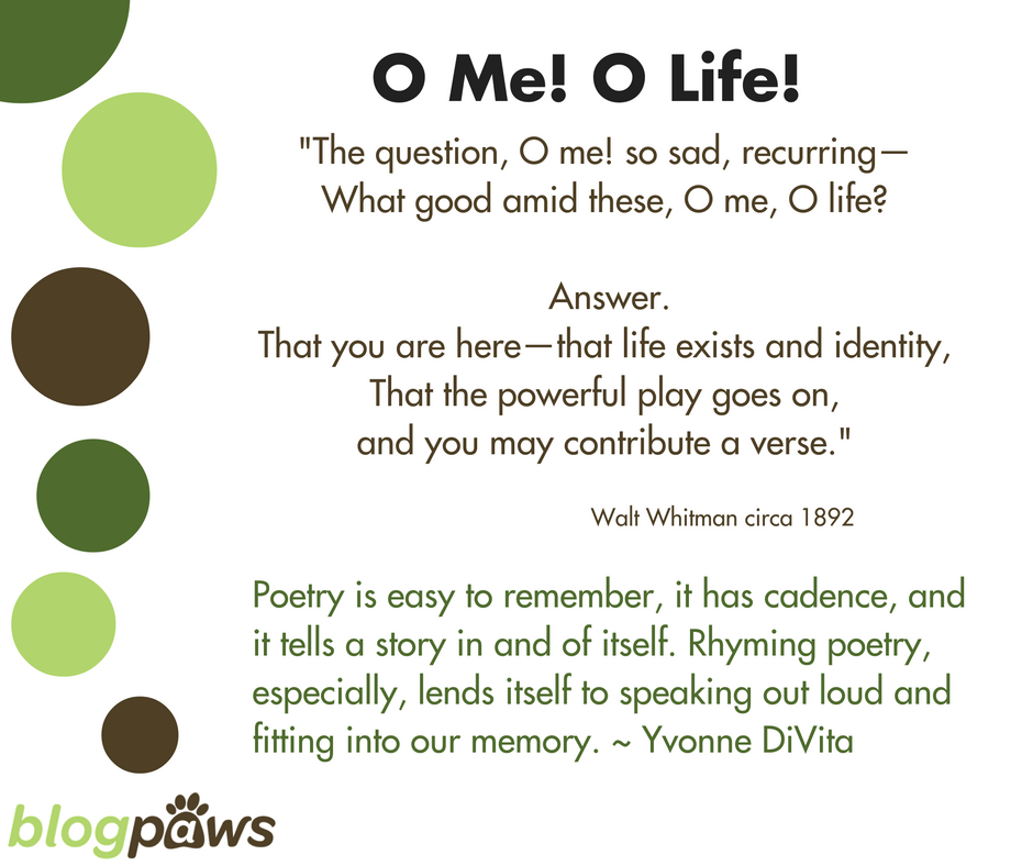Oh Me Oh Life poetry as narrative in blog posts