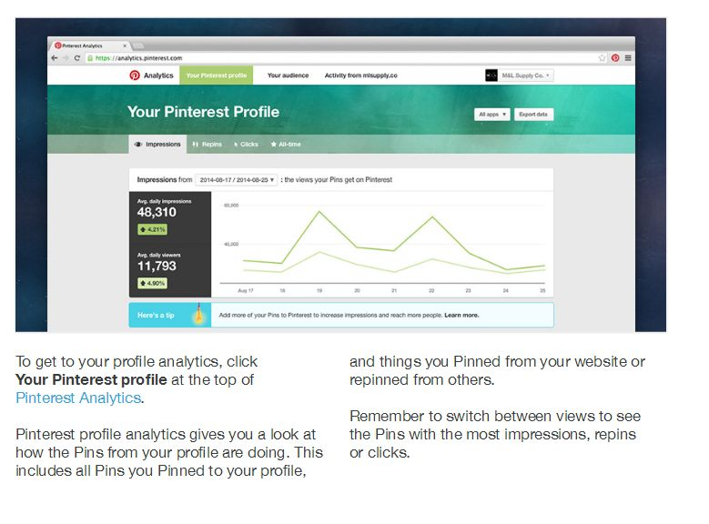 Pinterest analytics from Pinterest Business page