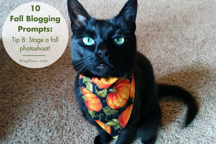 10 Fall-Themed Blogging Prompts - BlogPaws.com