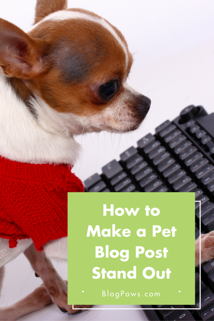 How to Make a Blog Post Stand Out