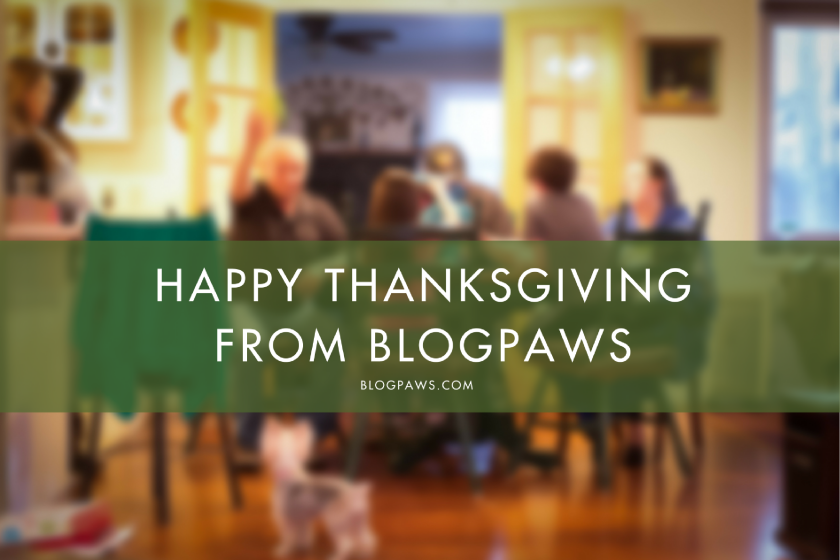 Happy Thanksgiving from BlogPaws | BlogPaws.com
