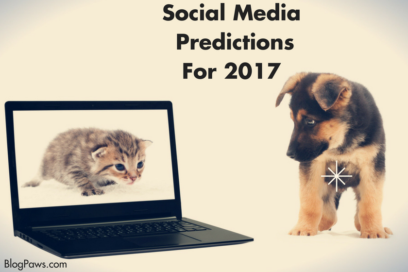 Social Media Predictions 2017