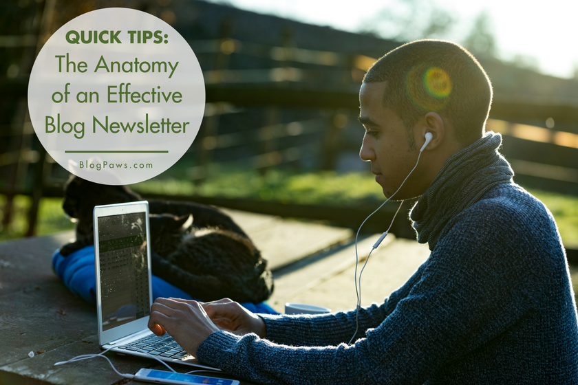 The Anatomy of an Effective Blog Newsletter | BlogPaws.com