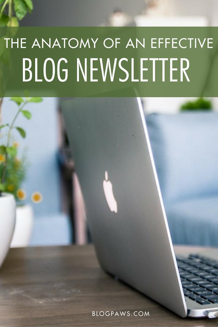 The Anatomy of an Effective Blog eNewsletter | BlogPaws.com