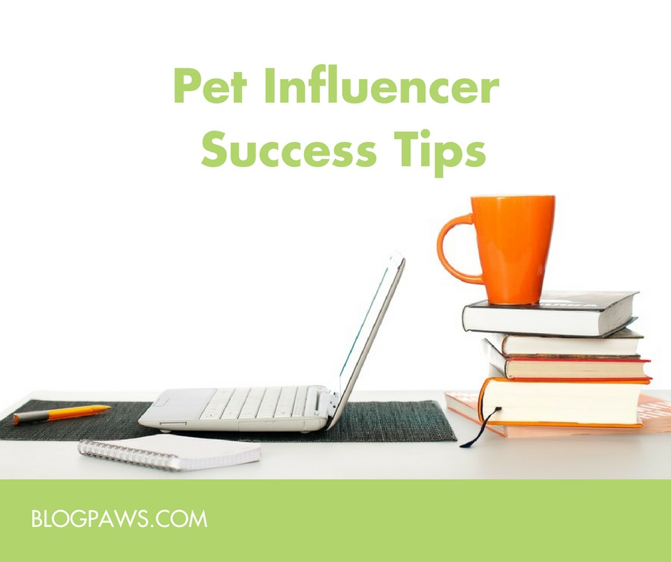 pet influencer success tips