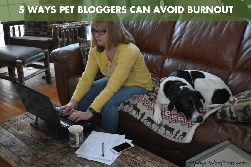 5 Ways Pet Bloggers Can Avoid Burnout - BlogPaws.com