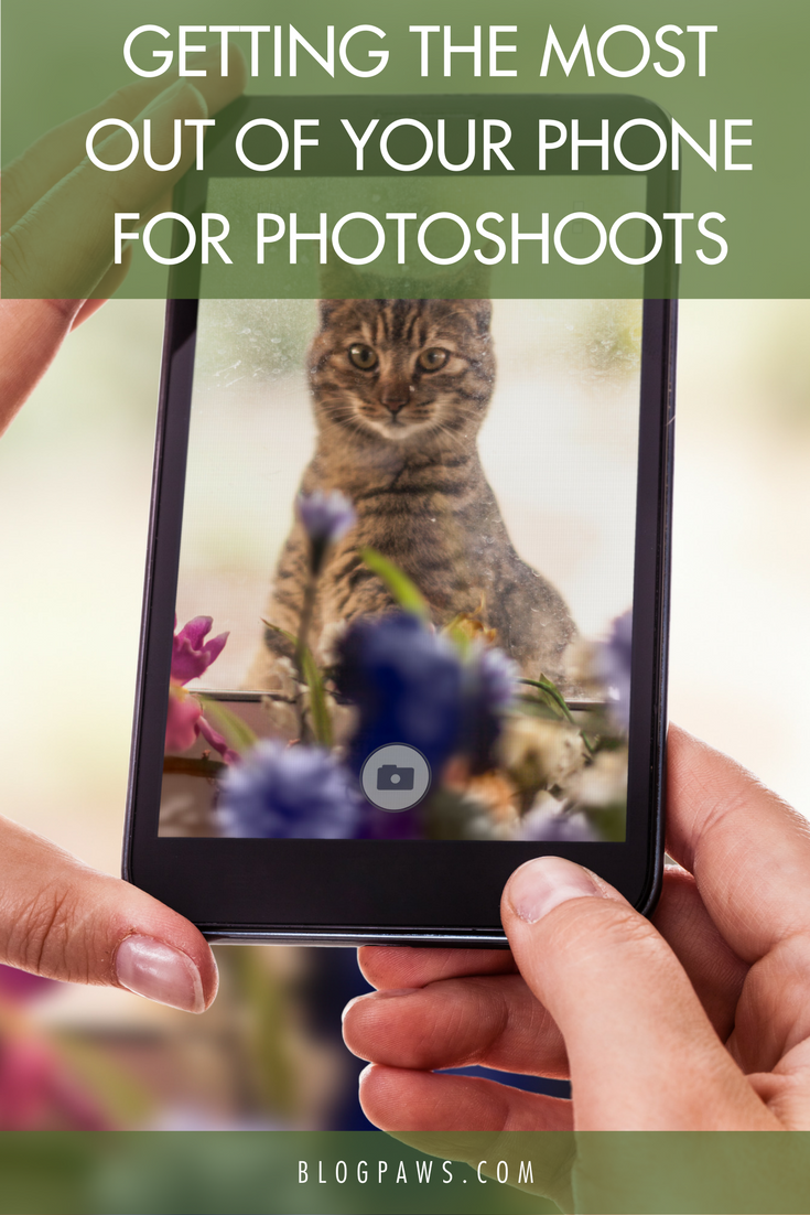 Getting the Most Out of Your Phone for Photoshoots- BlogPaws.com