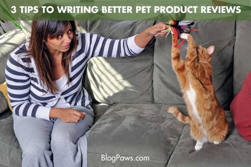 3 Tips to Writing Better Pet Product Reviews - BlogPaws.com