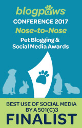 BEST USE of SOCIAL MEDIA by 501c3 Nose-to-Nose 2017 - FINALIST badge