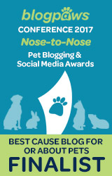 CAUSE BLOG - Nose-to-Nose 2017 - FINALIST badge