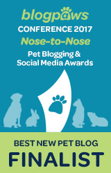 BEST NEW PET BLOG Nose-to-Nose 2017 - FINALIST badge