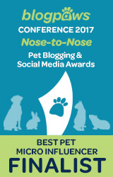 BEST PET MICROBLOG Nose-to-Nose 2017 - FINALIST badge