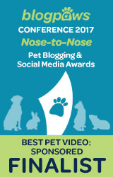 BEST PET BLOG VIDEO - SPONSORED - Nose-to-Nose 2017 - FINALIST badge