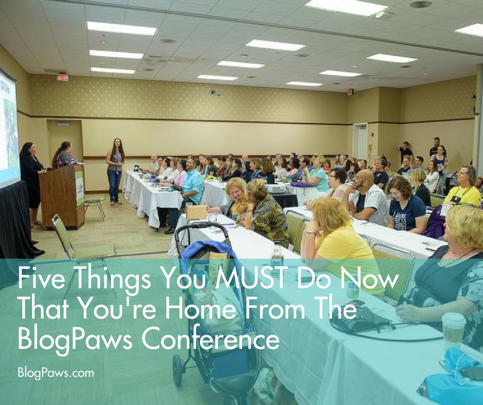 Five Things You MUST Do Now That You're Home From BlogPaws Conference