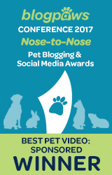Best Pet Blog Video - Sponsored badge