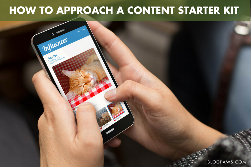 How to Approach a Content Starter Kit Creatively - BlogPaws.com