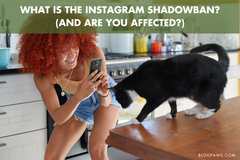 What is the Instagram Shadowban? And Are You Affected?