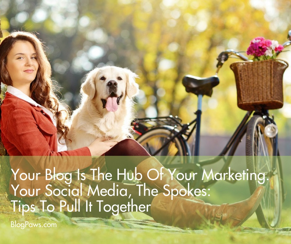 blog is marketing hub