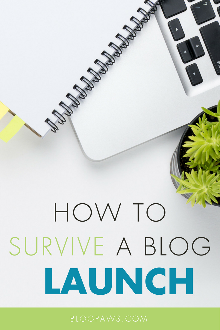 How to Survive a Blog Launch