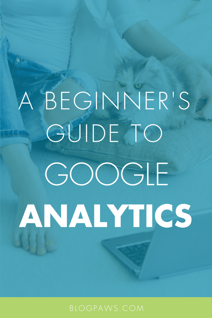 A Beginner's Guide to Google Analytics- The Data You Need to Get Started