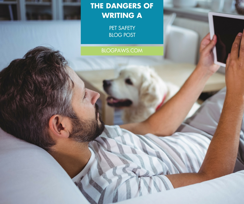 How to write a pet safety blog post