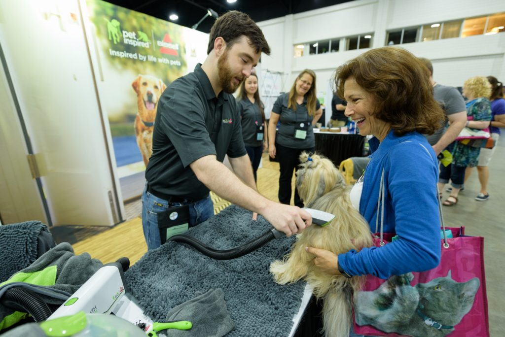 brands and blogpaws