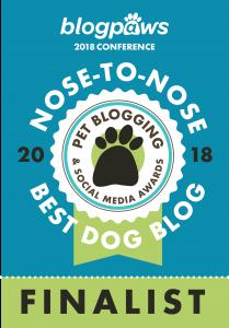 Best Dog Blog