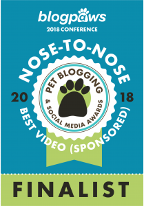 Best Video - Sponsored