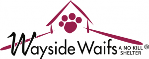 Wayside Waifs