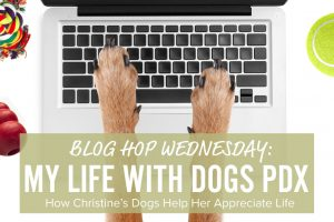 my life with dogs pdx blog hop