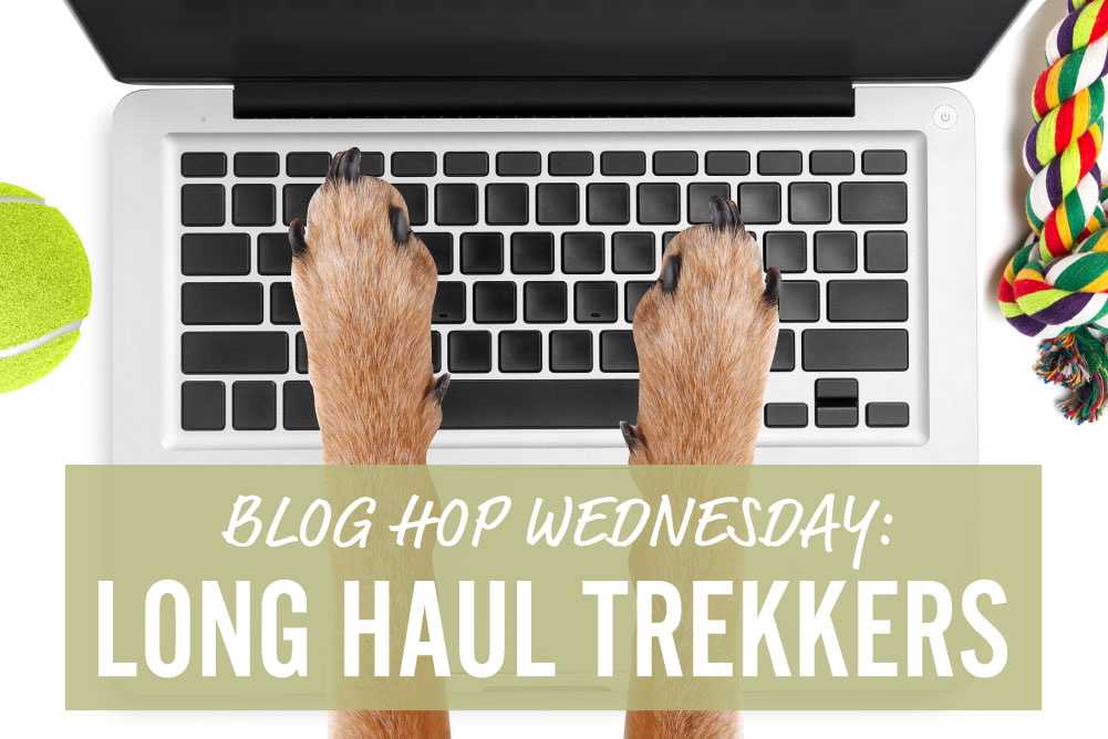 blog hop wednesday