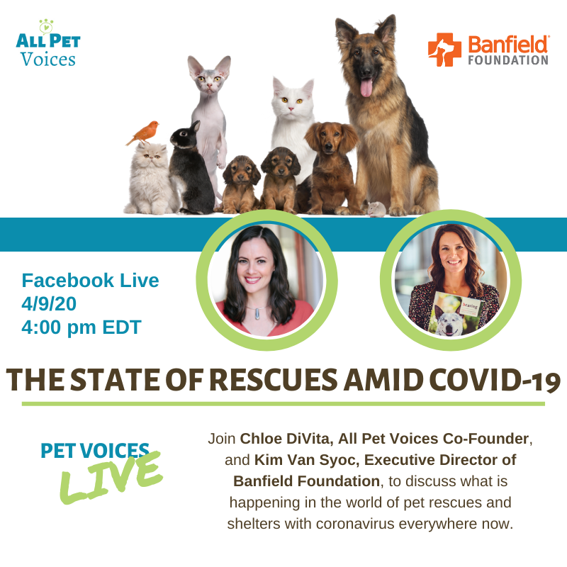 Rescues and COVID - Banfield Foundation