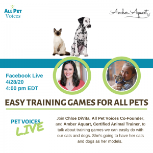 Training Games for Pets