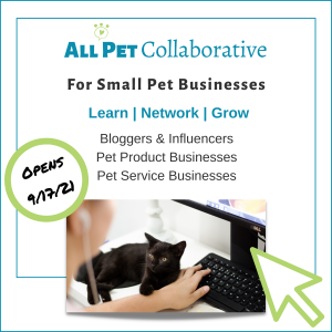 cat sitting on desk by woman typing with headline All Pet Collaborative learn more