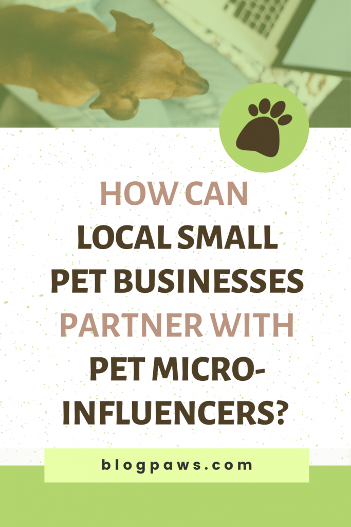 Doxie with head by computer keyboard and title How Can Local Small Pet Businesses Partner with Pet Micro-Influencers
