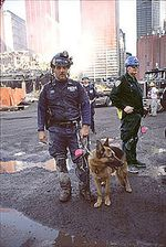 220px-State_Department_Images_WTC_9-11_Officer_with_the_Canine_Rescue_Team