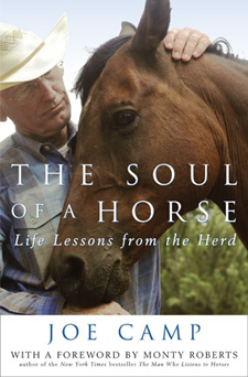 The-Soul-of-a-Horse-book
