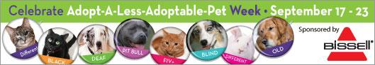 Less-adoptable-masthead