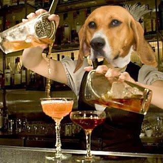 Barktender pouring drinks