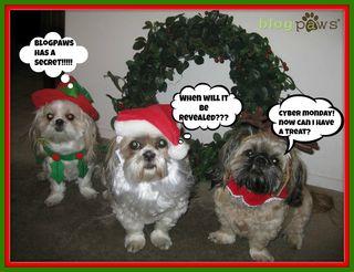 HolidaydogsBP
