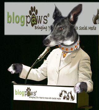 BlogPaws Pawty #6