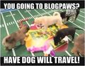 Blogpaws_ap