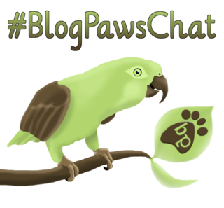 BlogpawsParrotChat