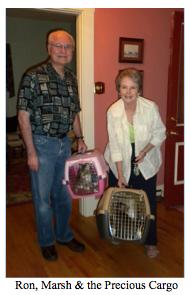 Ron Marsh Rescue Cats