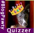 Twiggy Quizzer